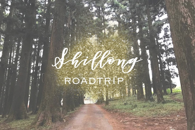 Travelling to Shillong on a Budget.